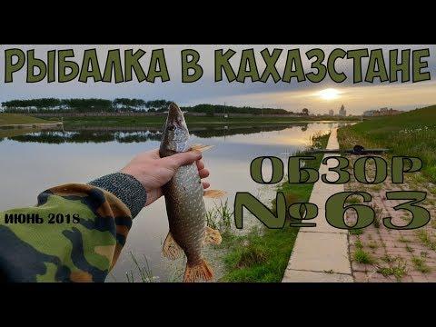 Рыбалка 2018 в Казахстане Обзор с рыбных мест №63 Рыбалка в области GGGKasier