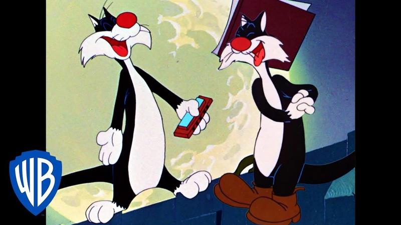 Looney Tunes Back Alley Oproar Classic Cartoon WB Kids