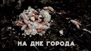 """Документальный фильм """"На дне города"""""""