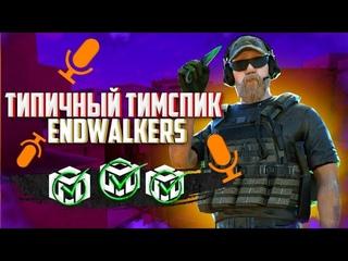 Типичный тимспик Endwalkers против Elite Snipers