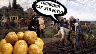 Картофельные бунты в России.Почему русские  не хотели есть картошку?