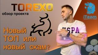 TOREXO / Будет новый топ или скорый скам? Обзор проекта/маркетинга. Стоит ли заходить?