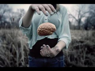 Shpongle - Tickling the Amygdala [Music Video]