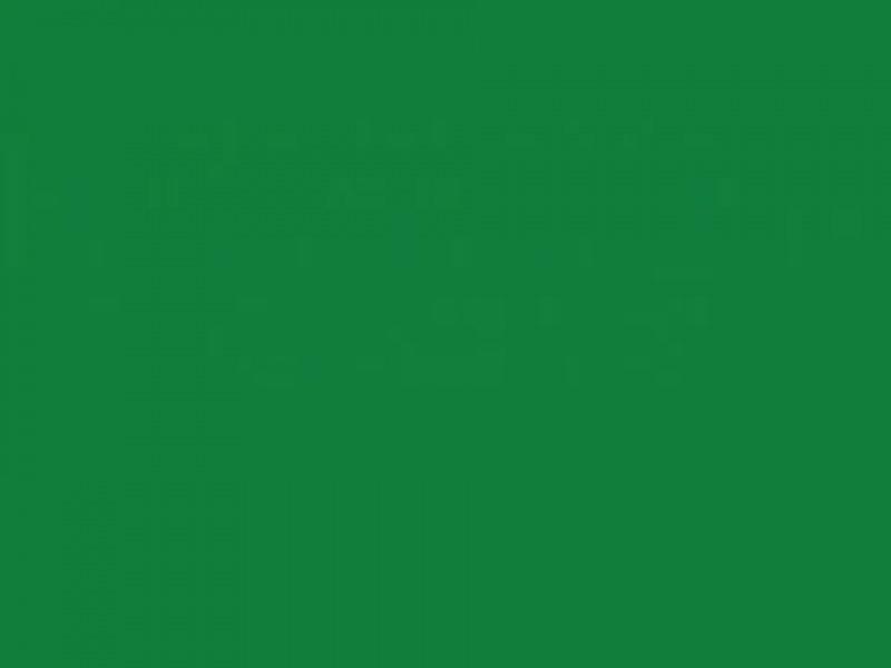 Груминг цвергшнауцера
