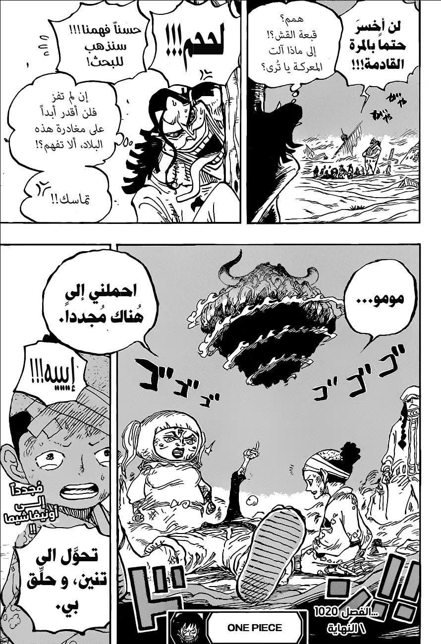 One Piece Arab 1020, image №17