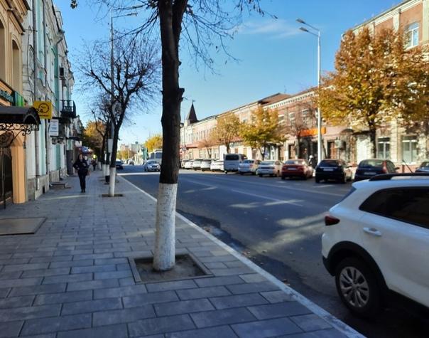 На улицах Сызрани посадят дорогие и колючие деревь...