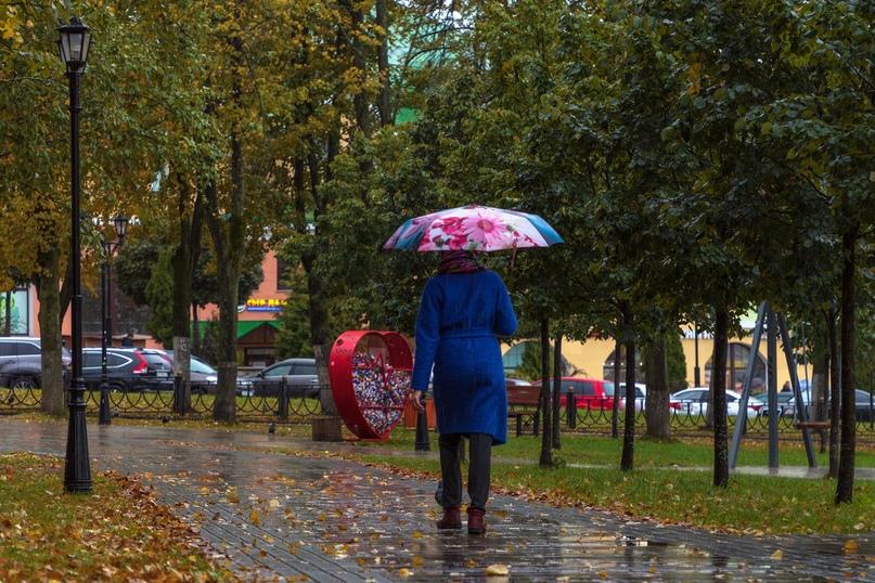 «Желтый» уровень погодной опасности объявлен в Московском регионе из‑за ветра
