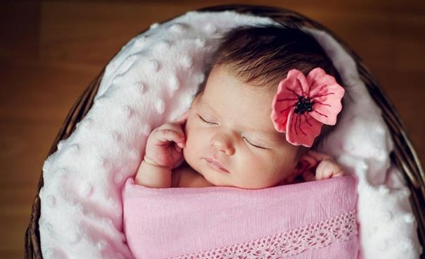 Липчанки называли рожденных в 2021 году дочек Моника, Камилла и Николетта  Управление ЗАГС администрации города поделилось... [читать продолжение]