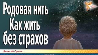 Родовая нить как жить без страхов. Алексей Орлов